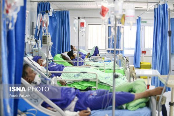 فوت 88 تن از مبتلایان کرونا در شبانه روز گذشته، مجموع قربانیان از 61 هزارنفر گذشت